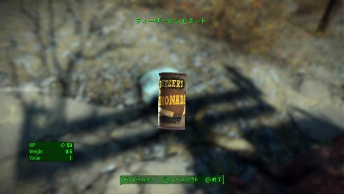 Fallout4_0256