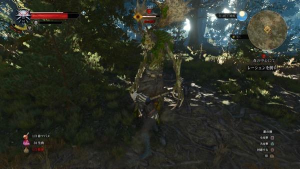 音を追っていくと森の精霊(レーシェン)と戦闘。 離れるとカラスを放って多段ヒット攻撃や樹木を生やす攻撃を行ってきます。  とにかく最初は従えている狼をイグニで